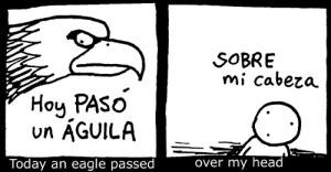 Dario-Augurios-01-Aguila+TRAD-DETAIL-www_MarekBennett_com
